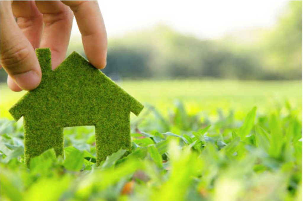 5 Easy ways to be more environmentally friendly at home